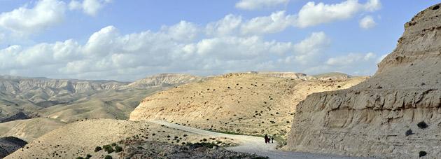 desert walkers israel